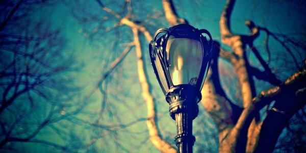 И фонарь, как подсолнух на выцветшей ножке