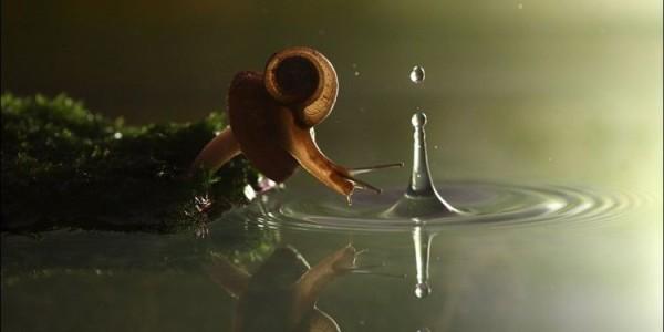 Льется из крана сухая вода