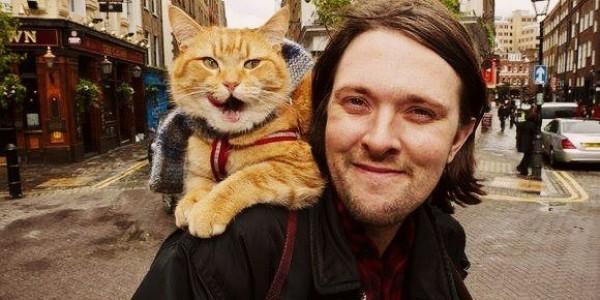 Человек и кот